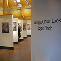 about Joyce Pinch exhibitions